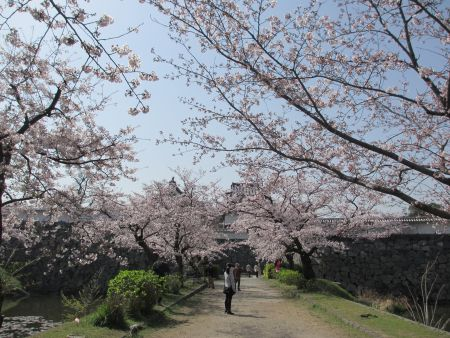 福岡城跡に通じる道