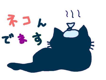 ネコんでます