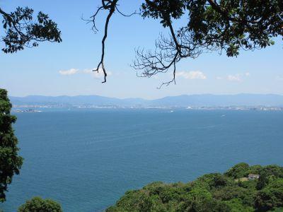 緑と博多湾