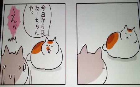 ねこまき2