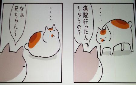 ねこまき1