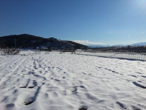 雪の弘法山